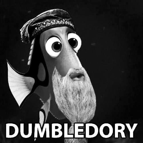 Harry Potter crosses Finding Nemo... So dorky, but I admit it, I laughed.