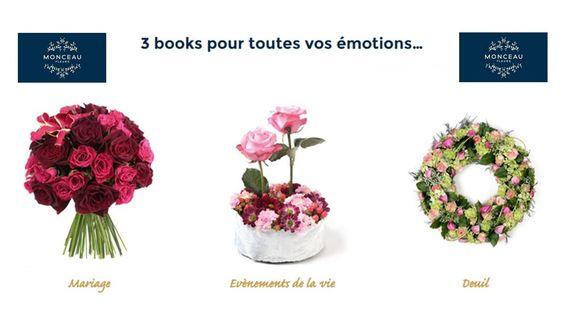 Veille, Informations et Communauté en ligne pour les professionnels ! - Jardinerie – Animalerie – Fleuriste - Editions MEDIA-TALENTS - Surligneur de Talents !