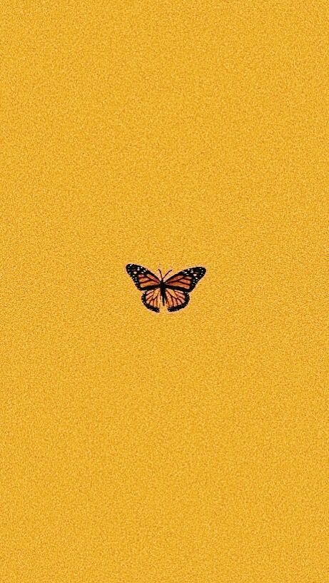 Butterfly Yellow Wallaper Landscapepics Homescreen Wallpaper
