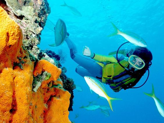 Go Scuba Diving... this would require conquering major fears.