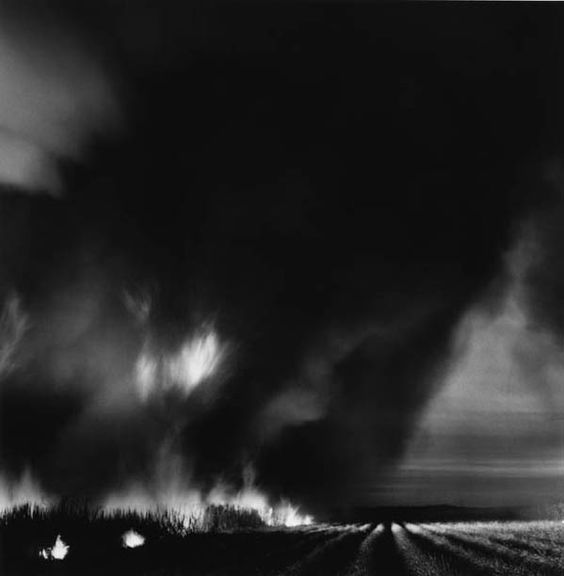 Debbie Fleming Caffery Photography - Burning cane field -repinned by Los Angeles County, CA photography studio http://LinneaLenkus.com #photographers: