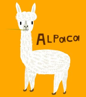 Bags, Look at and Alpacas on Pinterest