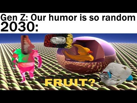 Home Youtube Memes Daily Video Humor