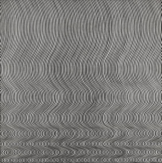 """Bridget Riley - Fall  Michael Compton's account of Bridget Riley's painting, Fall, """"The eye (and the mind) is threatened with a complete breakdown in its power to control or structure what it sees. It is overwhelmed which contridictory information, much of it is created by its own mechanisms, which in less extreme conditions, serve to stabilise perception."""""""