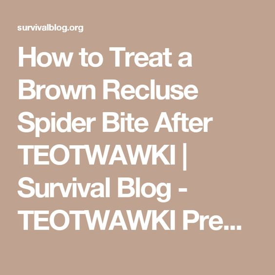 How to Treat a Brown Recluse Spider Bite After TEOTWAWKI   Survival Blog - TEOTWAWKI Preparedness