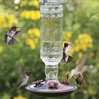 prettiest hummingbird feeder ever: