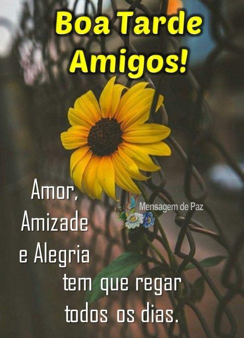 Amor Amizade E Alegria Com Imagens Amor Amizade Amizade
