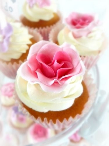 Beautiful rose cupcake (Almie's Bakery). Love the different shades of pink.