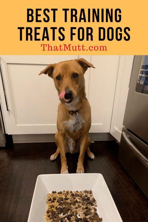 Best Dog Training Treats Dog Training Treats Training Treats Best Dog Training