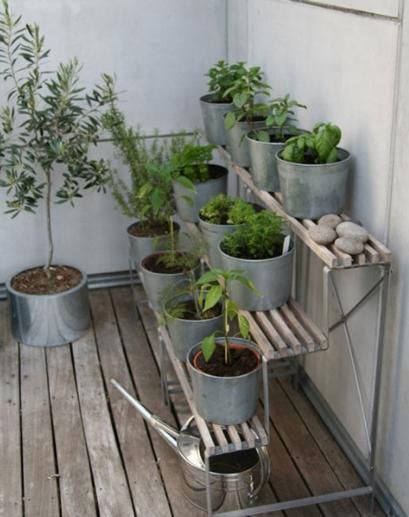 Balcony Vegetable Garden - perhaps this can replace my sticksies?