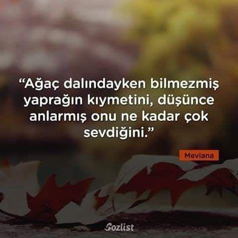 2 134 Begenme 22 Yorum Instagram Da Bogurtlen Kisi Bogurtlenkisi Official In 2020 Quotes Words Sayings
