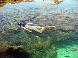 Mergulho nas Piscinas Naturais de Porto de Galinhas -PE-Brasil