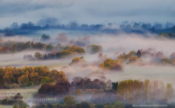 Spring morning by aleskomovec. Please Like http://fb.me/go4photos and Follow @go4fotos Thank You. :-)