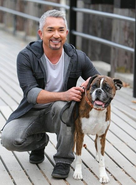 Cesar Millan Photos: Cesar Millan Poses With a Dog