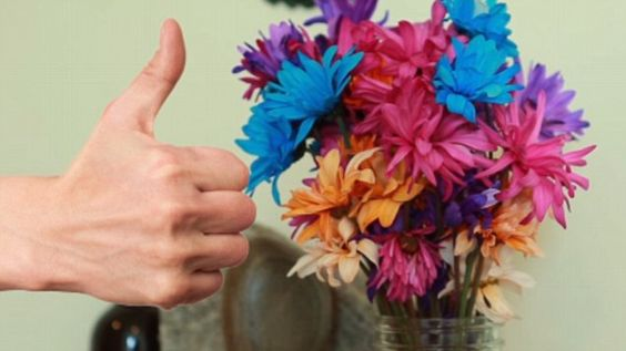 Learn more about the science behind getting your flowers to last longer than ever and get great tips on how to care for them.