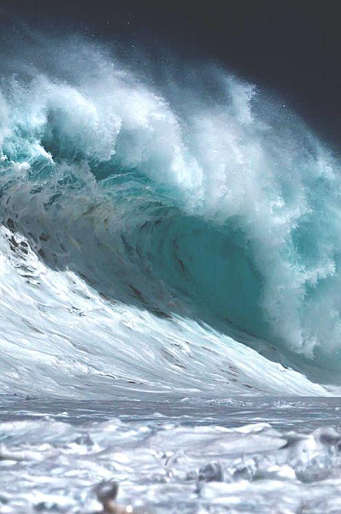 Сегодня хорошая волна для сёрфинга по реальности)). Доброго дня!: nandzed —  LiveJournal