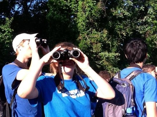 Guided Bird Walks King Of Prussia, Pennsylvania  #Kids #Events