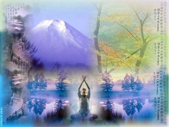 my zen