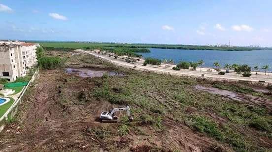 MÉXICO, DF (apro).- Luego de la indignación que causó la tala de manglares para el proyecto de desarrollo inmobiliario Malecón Tajamar en Cancún, Quintana Roo, el pasado fin de semana, la Secretarí…