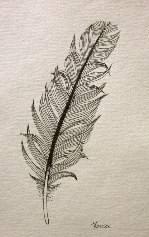 Another messy black feather  original ink drawing by anne4bags, $15.00