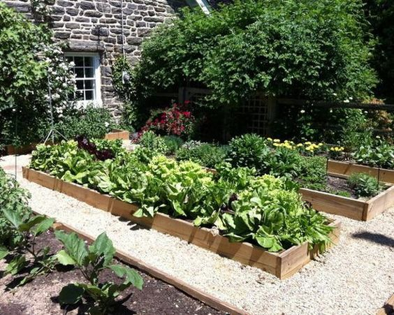 Raised Garden Bed Design Ideas modern garden beds design ideas 2 raised garden bed ideas native garden design Raised Garden Beds Designs Posted In Decorating Ideas Green Design Ideas Outdoor