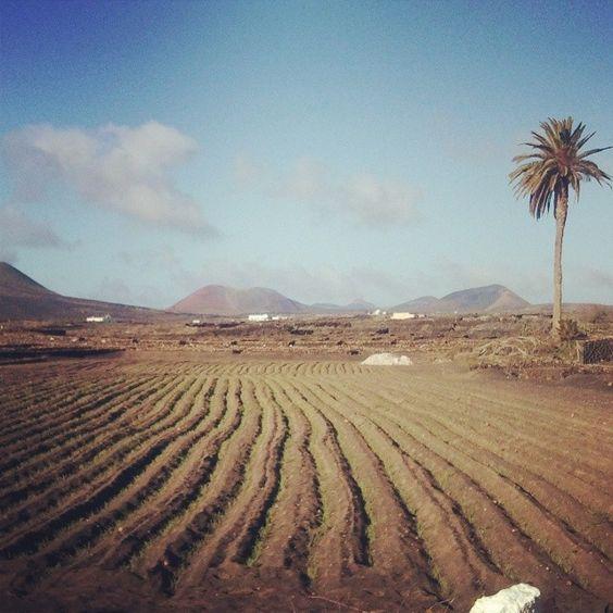 Tinajo in Canarias