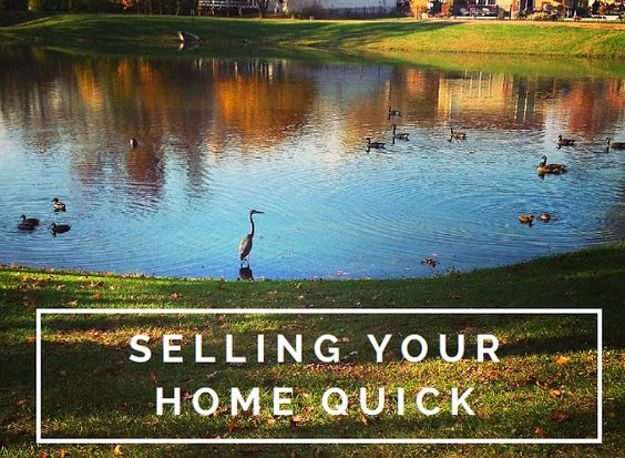Truth Behind The Blog - Selling Your House Fast