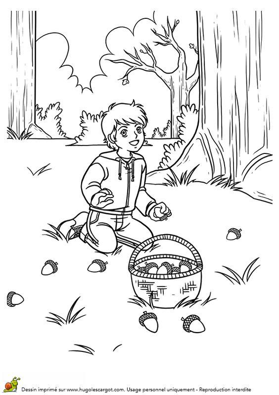 Coloriage dessin automne ramasser des glands en foret coloriages dessins d 39 automne pinterest - Dessin d automne facile ...