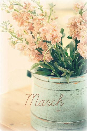 ☼ Seasons ☼ Spring ☼ March | by lucia and mapp