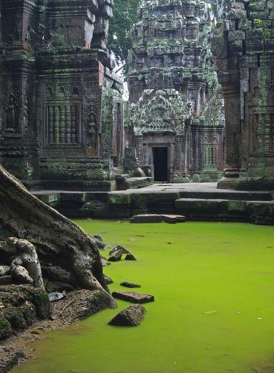 Ruined temple hidden in a jungle.