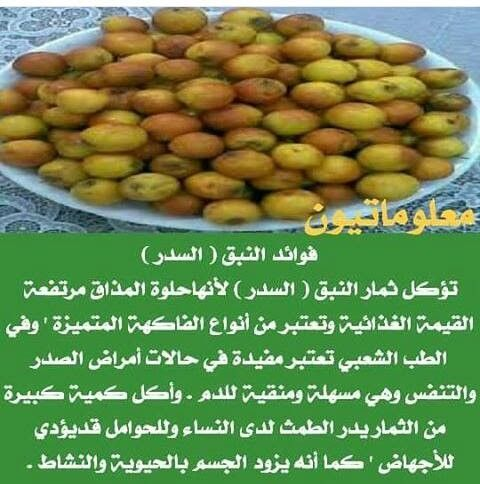 Pin By Mosab Smadi On Sante Medecine Health Fitness Nutrition Nutrition Food