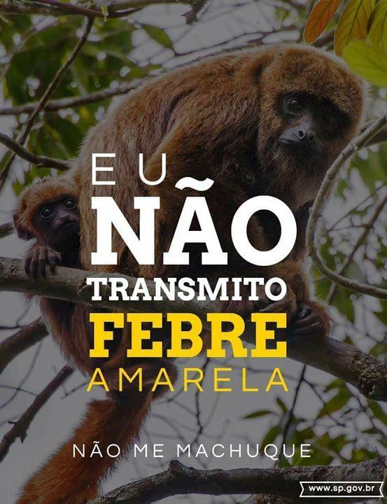 Untitled Febre Amarela Animais Silvestres Animais