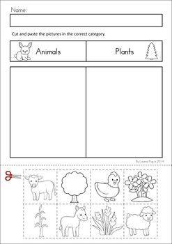 Animais/Plantas