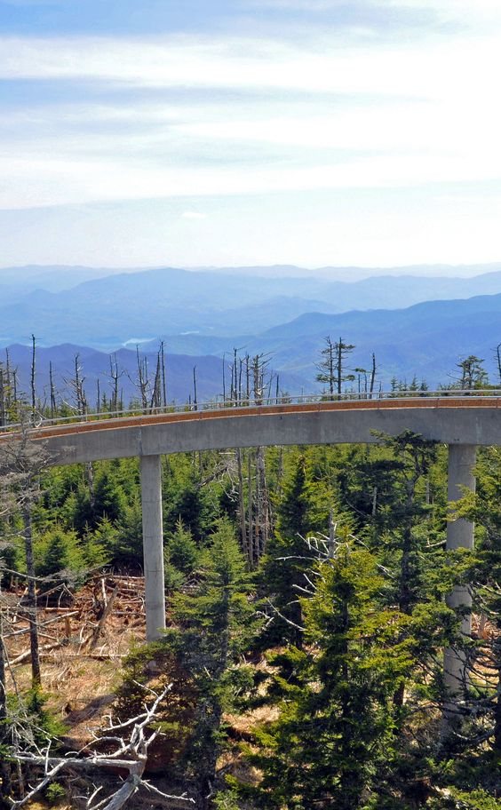 Clingmans Dome | Travel | Vacation Ideas | Road Trip | Places to Visit | Great Smoky Mountains National Park | TN | Natural Feature | Hiking Area | Scenic Point