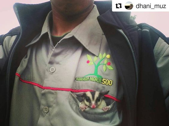 Cute pict by @dhani_muz . I'm Ready to go Adventure! Let's set off partner!  . #sugarglider #sugarglideracademy