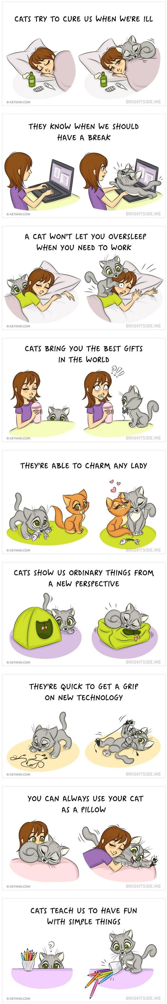 Cats are simply the best! and here are 9 reasons why everyone needs a cat in their life. Credits: ASTKHIK: