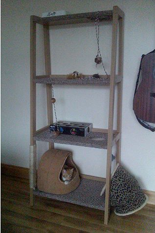 Diy cat tower shelf if only alley cat had claws for Bookshelf cat tower