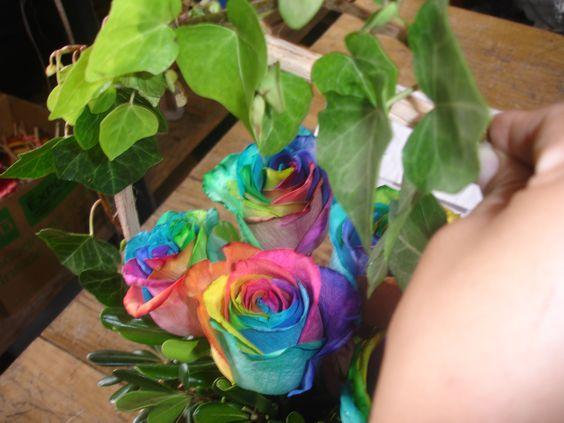 Y asi iniciamos el Lunes trabajando con nuestras Bellas Rosas Arcoiris, Feliz Lunes amigos Bendiciones para todos.