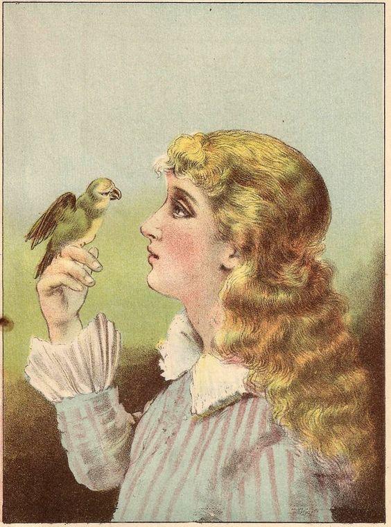 Victorian Bird Print - Antique1890 Storybook illustration