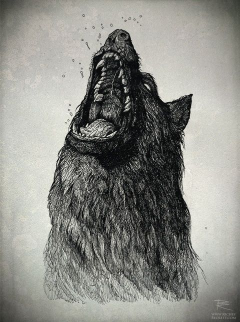 Angry wolf sketch, drawing | Art Inspiration | Pinterest ...