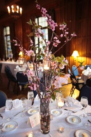 Tall cherry blossom with hanging votives