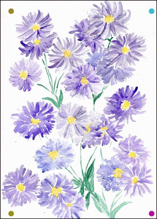 Asters Par Katehavekostfineart Sur Etsy Flower Art Flower Drawing Flower Painting