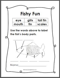 Worksheets Labeling Of Of A Fish Body simple anatomy and fish on pinterest heres a diagram of that the kids can label color its little follow up to yesterdays blog post with word s