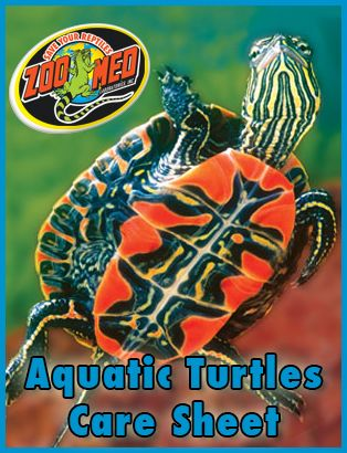 Out zoo med s custom care sheet for aquatic turtles find more care
