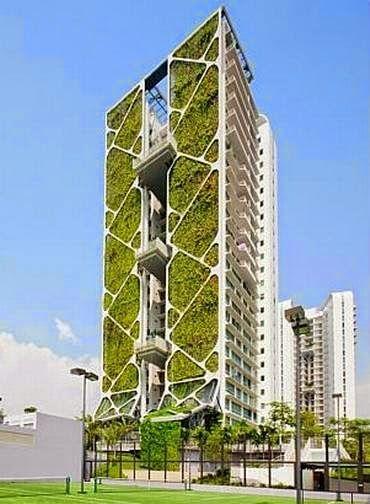 Blumenau Vertical - O site dos edifícios de Blumenau: Condomínio bate recorde com o maior jardim vertical do mundo