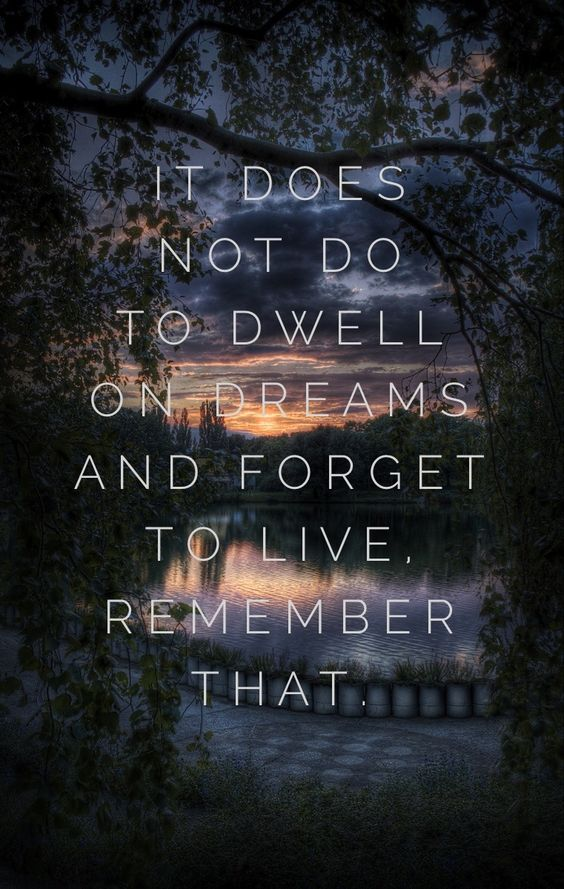 It does not do to dwell on dreams and forget to live ...