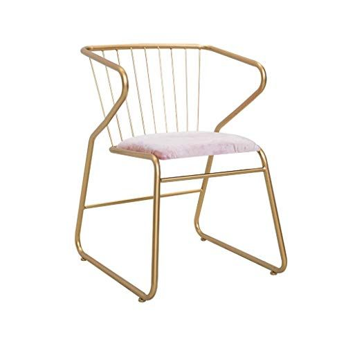 Dining Chairs Metallic Iron Bedroom Dressing Chair Kitchen Chairs