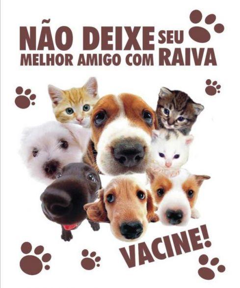 Campanha de Vacinação Anti-rábica em Bom Jardim – PE, neste sábado 19-10-2013 | BomJardimNoticias.com.br