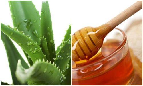 Nha đam và mật ong là sự kết hợp hoàn hảo giúp dưỡng tóc và làm đẹp.