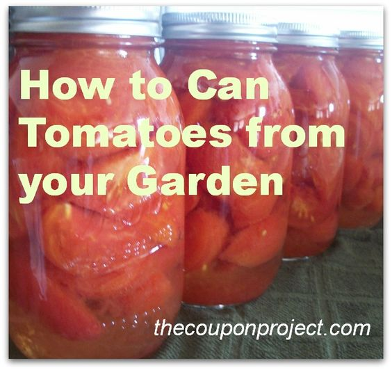 How to Can Tomatoes from you Garden from our friends at The Coupon Project.